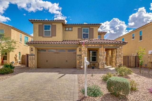 2685 E Gillcrest Road, Gilbert, AZ 85298 (MLS #5729681) :: Occasio Realty