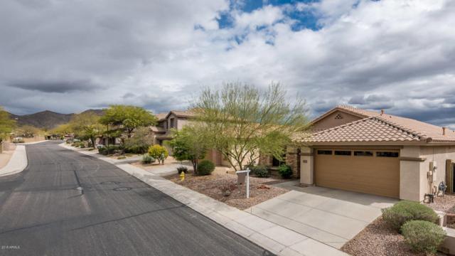 41127 N Iron Horse Way, Anthem, AZ 85086 (MLS #5730859) :: My Home Group