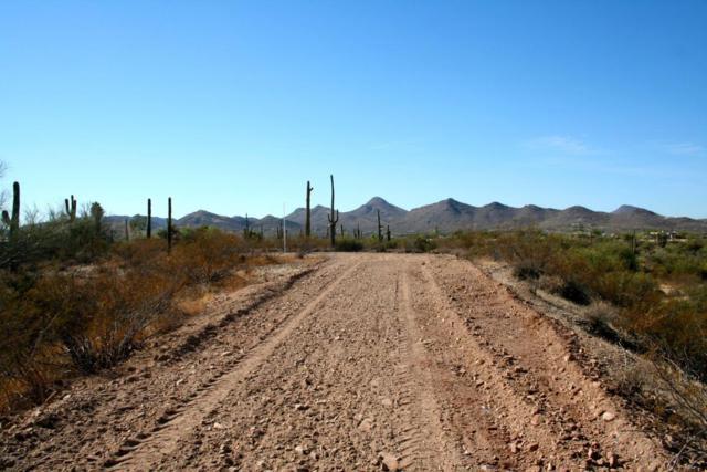 6300 E Fleming Springs Road, Cave Creek, AZ 85331 (MLS #5731005) :: Brett Tanner Home Selling Team