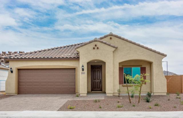 25999 W Tonto Lane, Buckeye, AZ 85396 (MLS #5731226) :: My Home Group