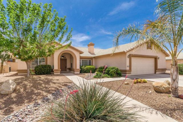 1671 E Badger Lane, Casa Grande, AZ 85122 (MLS #5732781) :: Yost Realty Group at RE/MAX Casa Grande