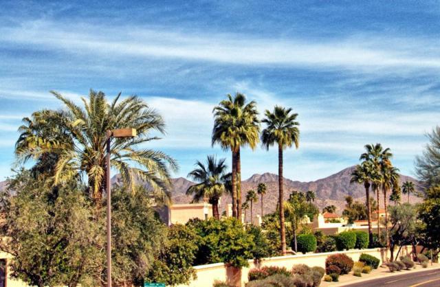 10015 E Mountain View Road #2005, Scottsdale, AZ 85258 (MLS #5733006) :: Brett Tanner Home Selling Team