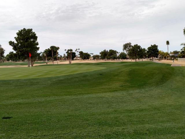 12903 W Paintbrush Drive, Sun City West, AZ 85375 (MLS #5733235) :: Private Client Team