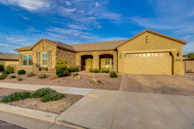 7813 S 30TH Way, Phoenix, AZ 85042 (MLS #5733348) :: Cambridge Properties