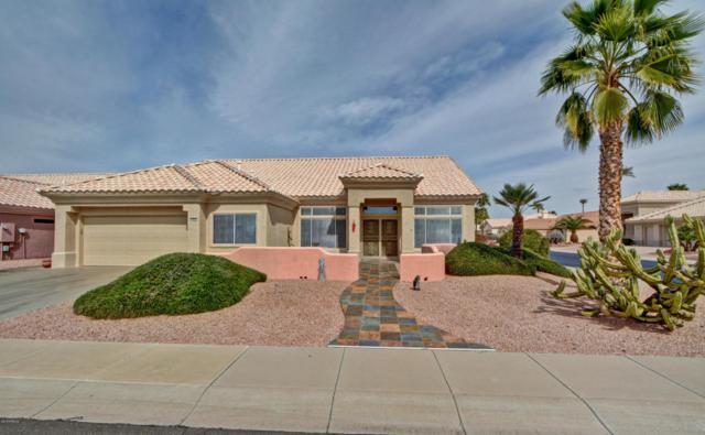 14612 W Colt Lane, Sun City West, AZ 85375 (MLS #5734279) :: Occasio Realty