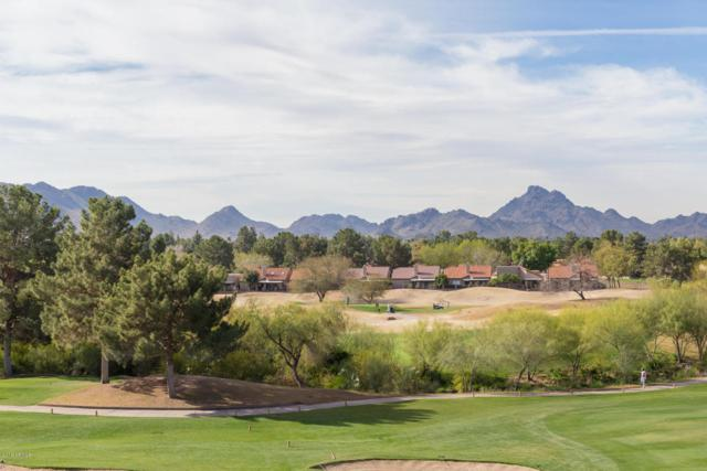4303 E Cactus Road #447, Phoenix, AZ 85032 (MLS #5734490) :: 10X Homes