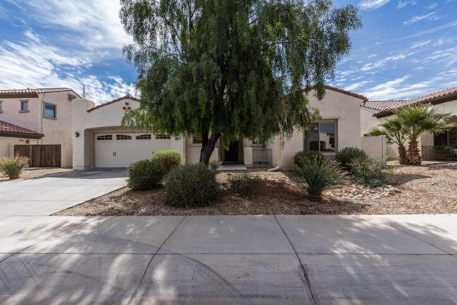 15635 W Meadowbrook Avenue, Goodyear, AZ 85395 (MLS #5734704) :: Phoenix Property Group