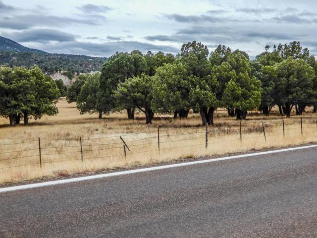 09D N 288 Highway, Young, AZ 85554 (MLS #5734964) :: Yost Realty Group at RE/MAX Casa Grande