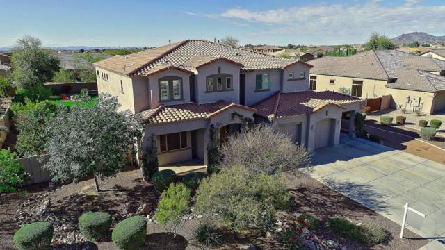 18335 W Montebello Avenue, Litchfield Park, AZ 85340 (MLS #5735435) :: Occasio Realty
