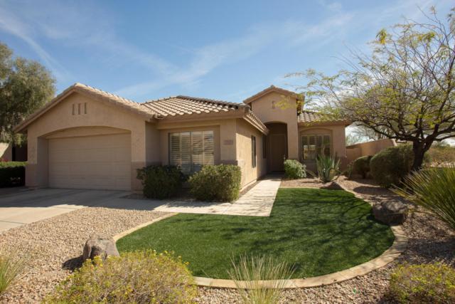 7707 E Nestling Way, Scottsdale, AZ 85255 (MLS #5735575) :: Private Client Team