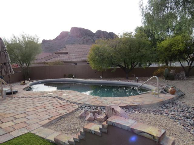 5033 S Vision Quest Court, Gold Canyon, AZ 85118 (MLS #5735795) :: Occasio Realty