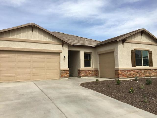 3822 W Lanham Drive, New River, AZ 85087 (MLS #5735903) :: My Home Group