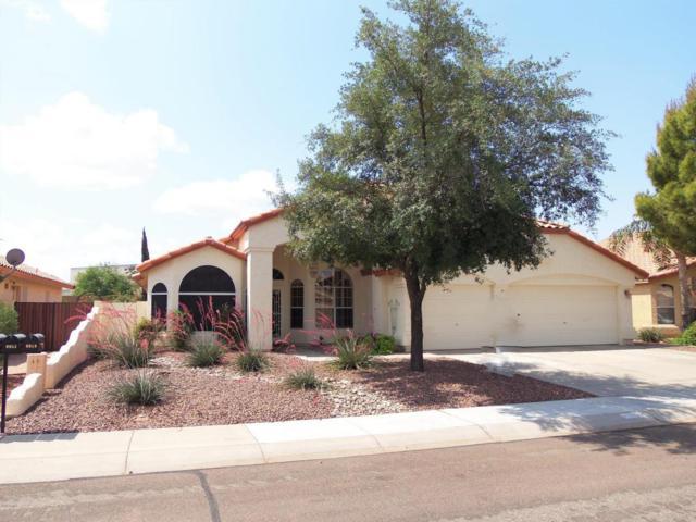 9953 W Tonopah Drive, Peoria, AZ 85382 (MLS #5735918) :: My Home Group