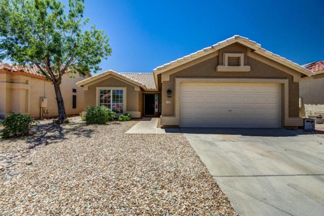 11558 W Sonoran Court, Surprise, AZ 85378 (MLS #5736268) :: The Daniel Montez Real Estate Group
