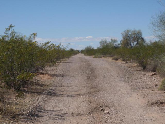 4835 N 425th Avenue, Tonopah, AZ 85354 (MLS #5736733) :: The Daniel Montez Real Estate Group
