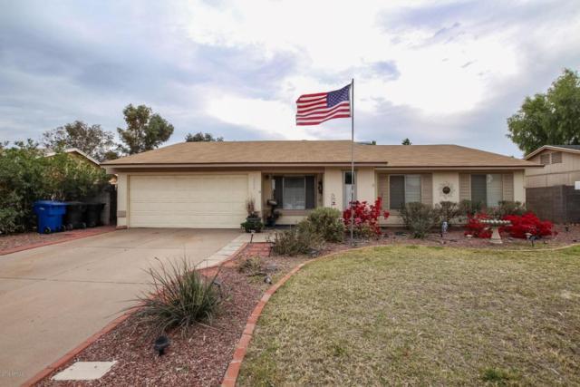 2449 E Impala Avenue, Mesa, AZ 85204 (MLS #5737149) :: The Jesse Herfel Real Estate Group