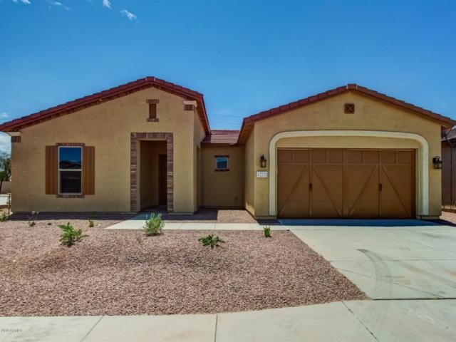 42211 W Cribbage Road, Maricopa, AZ 85138 (MLS #5738011) :: Sibbach Team - Realty One Group