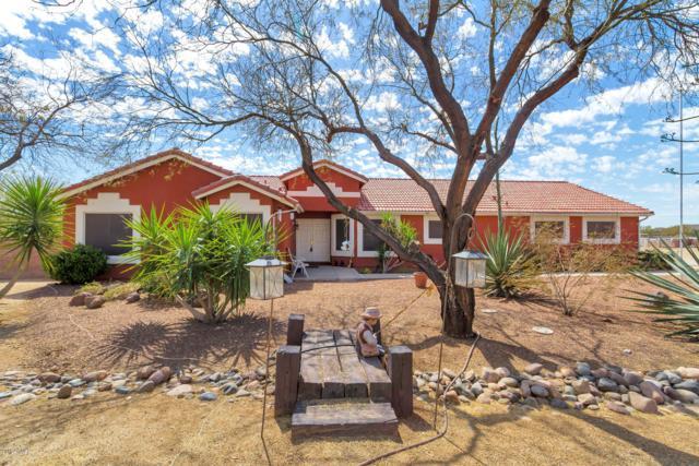 1511 W Joy Ranch Road, Phoenix, AZ 85086 (MLS #5738080) :: Team Wilson Real Estate