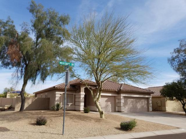 28077 N Muscovite Drive, San Tan Valley, AZ 85143 (MLS #5738317) :: The Bill and Cindy Flowers Team