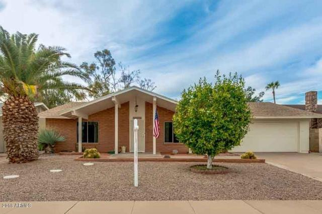 12006 S Tomi Drive, Phoenix, AZ 85044 (MLS #5738443) :: My Home Group
