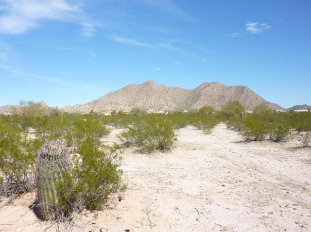 11592 N Fantail Trail, Casa Grande, AZ 85194 (MLS #5739267) :: Yost Realty Group at RE/MAX Casa Grande