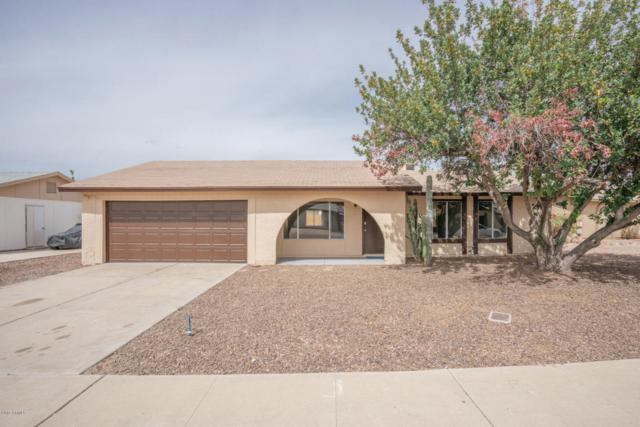 5732 W Michelle Drive, Glendale, AZ 85308 (MLS #5739268) :: Desert Home Premier