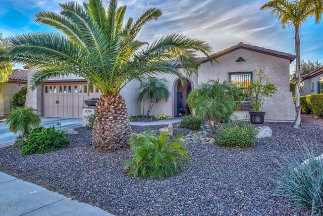 27906 N 124th Lane, Peoria, AZ 85383 (MLS #5739898) :: The Worth Group