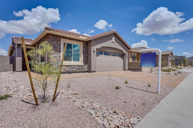 4144 W Palace Station Road, New River, AZ 85087 (MLS #5740343) :: The Wehner Group