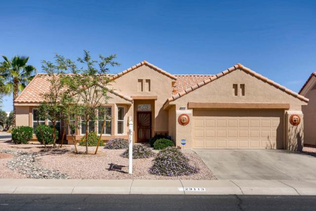 23113 N Drifter Way, Sun City West, AZ 85375 (MLS #5741636) :: Occasio Realty