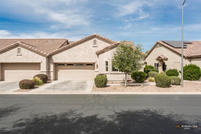 1576 E Earl Drive, Casa Grande, AZ 85122 (MLS #5741686) :: Kepple Real Estate Group