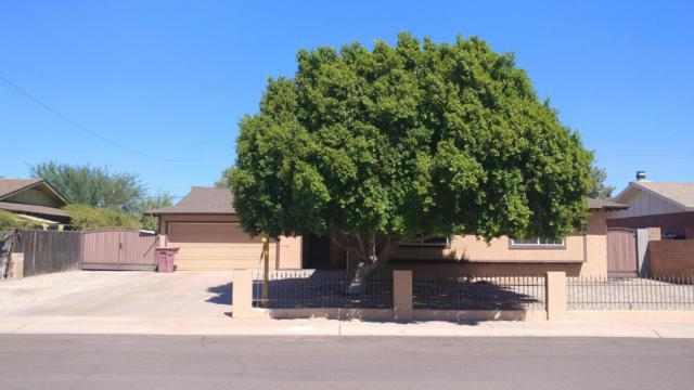 8644 E Roanoke Avenue, Scottsdale, AZ 85257 (MLS #5742078) :: My Home Group