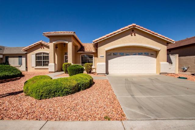 17242 N Goldwater Drive, Surprise, AZ 85374 (MLS #5742386) :: Essential Properties, Inc.