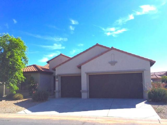 5423 N Scottsdale Road, Eloy, AZ 85131 (MLS #5742422) :: Santizo Realty Group