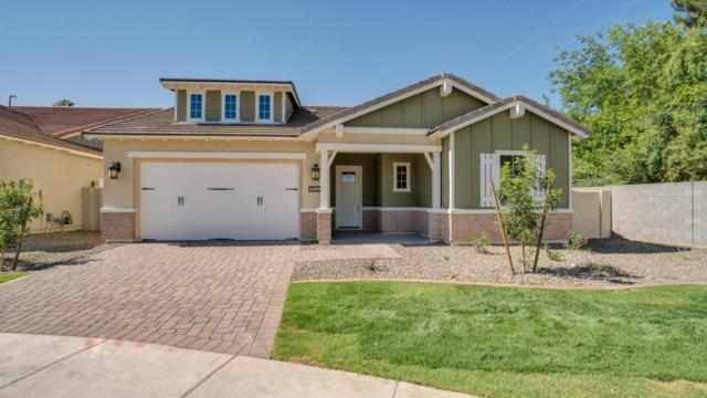 1529 W State Avenue, Phoenix, AZ 85021 (MLS #5742865) :: My Home Group