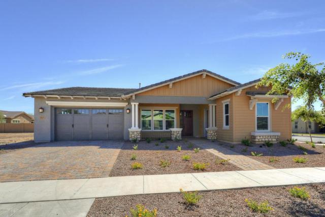 4905 N 209TH Drive, Buckeye, AZ 85396 (MLS #5743210) :: My Home Group