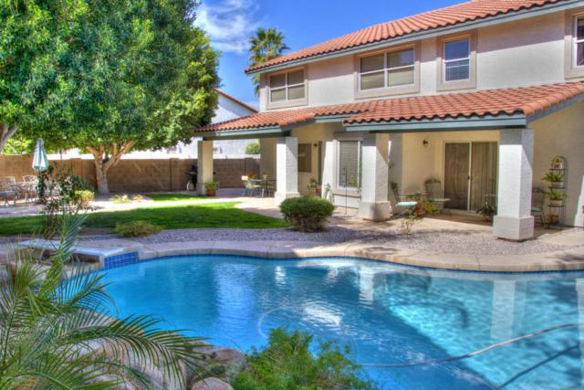 5723 W Larkspur Drive, Glendale, AZ 85304 (MLS #5744122) :: The Everest Team at My Home Group