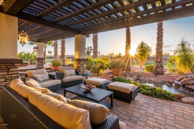 23008 N De La Guerra Court, Sun City West, AZ 85375 (MLS #5744224) :: Desert Home Premier