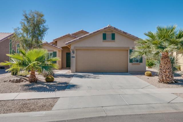 2561 E Santa Maria Drive, Casa Grande, AZ 85194 (MLS #5744478) :: Kortright Group - West USA Realty