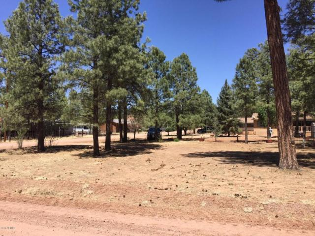 2049 Grey Squirrel Trail, Overgaard, AZ 85933 (MLS #5744789) :: My Home Group