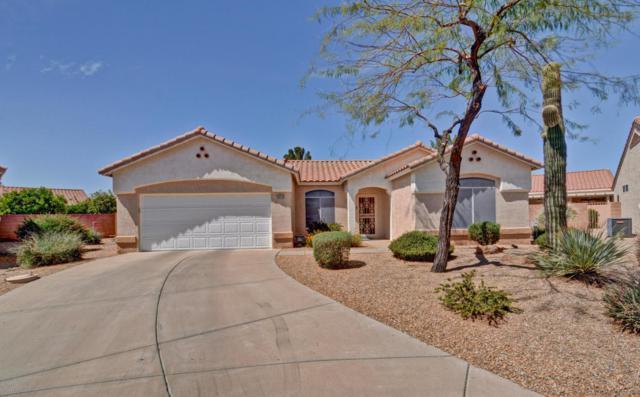 22216 N Las Brizas Lane, Sun City West, AZ 85375 (MLS #5745419) :: Occasio Realty