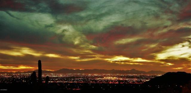 3845 N Hawes Road, Mesa, AZ 85207 (MLS #5746674) :: Santizo Realty Group
