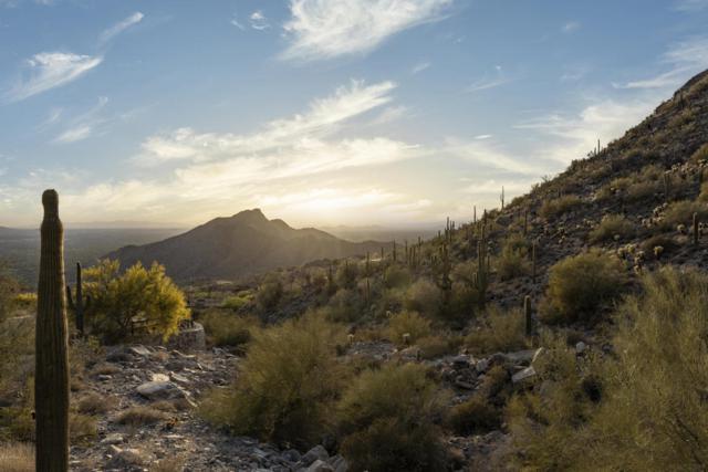11554 E Del Cielo Drive, Scottsdale, AZ 85255 (MLS #5747146) :: Occasio Realty