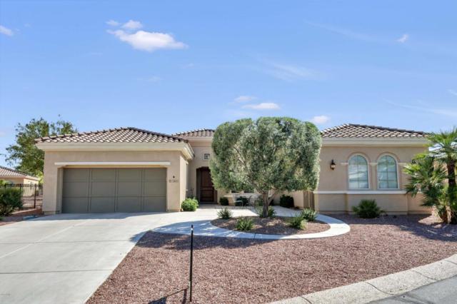 12841 W Chapala Court, Sun City West, AZ 85375 (MLS #5747291) :: Desert Home Premier