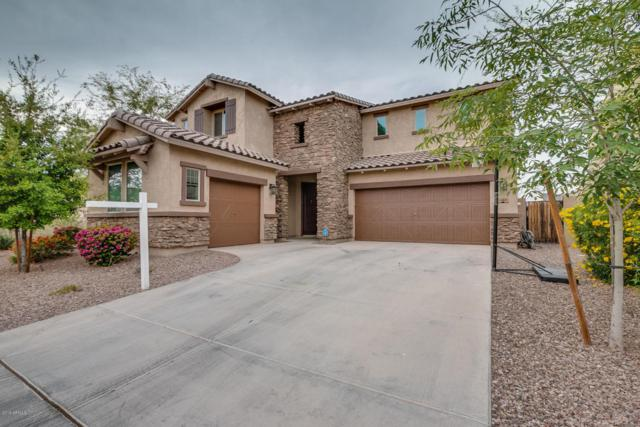 1488 E Canary Drive, Gilbert, AZ 85297 (MLS #5747323) :: Essential Properties, Inc.
