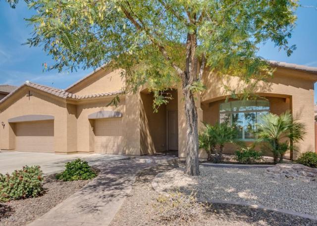 11356 E Solina Circle, Mesa, AZ 85212 (MLS #5747742) :: My Home Group