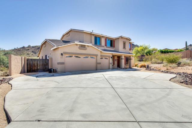 6634 W Via Dona Road, Phoenix, AZ 85083 (MLS #5748064) :: Cambridge Properties