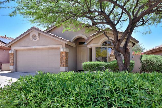 10279 E Hillery Drive, Scottsdale, AZ 85255 (MLS #5748422) :: Occasio Realty
