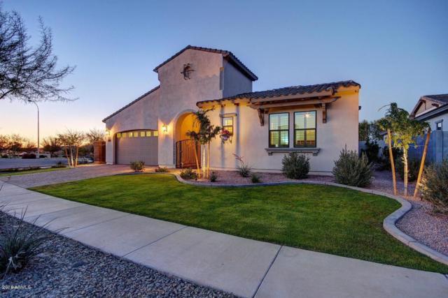 3800 E Horseshoe Place, Chandler, AZ 85249 (MLS #5749196) :: Lifestyle Partners Team