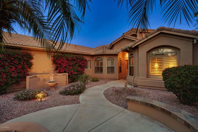 15693 W Edgemont Avenue, Goodyear, AZ 85395 (MLS #5749241) :: The Sweet Group