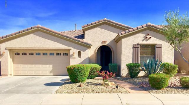 4724 E Sourwood Drive, Gilbert, AZ 85298 (MLS #5749380) :: The Jesse Herfel Real Estate Group